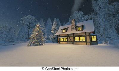 House and christmas tree at night