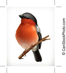 Bullfinch vector icon - Bullfinch on the branch, vector...
