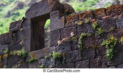 Old Window from a Monastry Wall A great piece of stock in 4k...
