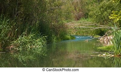 River Running through Countryside. A great piece of stock in...