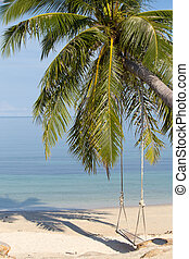 Coconut palm tree on the beach, Thailand - Beautiful...
