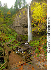 Bridge at the base of Latourell Falls Oregon