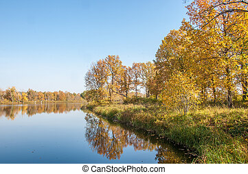 Fall landscape. Autumn colorful foliage over lake with beautiful woods in red and yellow color.