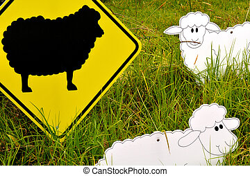 Black sheep in the flock - The Black sheep in the flock...