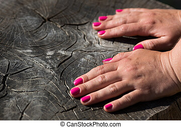 Time - Woman hand on old cracked stump