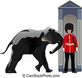 Buckingham guard pushed by elephant