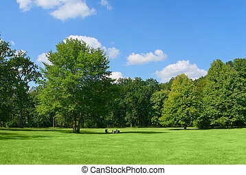 Family in park - Family resting in park under the big tree