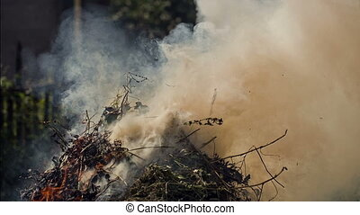 Smoke of Burning Garbage - Ecology polution with smoke of...