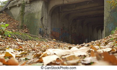 Graffiti Grunge Tunnel Entrance - Ground level shot of...