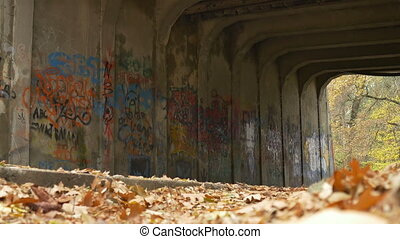 Autumn Grunge Tunnel View - Low angle shot of a graffiti...