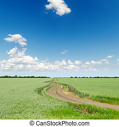 green fields with road under deep blue cloudy sky