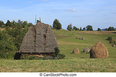 Landscape in Transylvania - Landscape in an isolated...