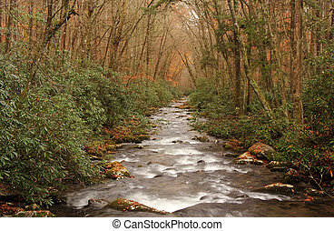 Oconaluftee River in Great Smokey Mountains National Park,...
