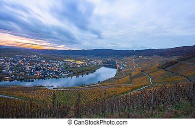Moselle and vineyards and Piesport village in the golden...