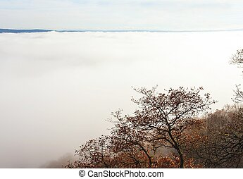 Autumn foggy landscape in the Moselle valley - Herbst...