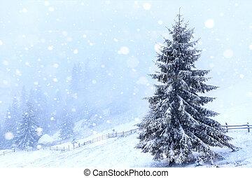 abete, albero, coperto, vicino, neve,