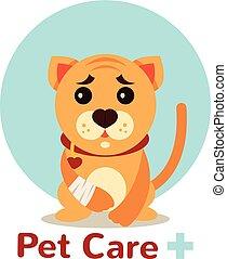 Veterinarian pet vector flat logo illustration