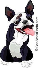 Boston Terrier Salute - Illustration of Boston terrier...