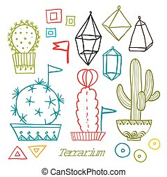 Cacti and succulents in pots Tags and labels In the hand...