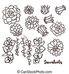 Succulents set In the hand drawn style Set for scrapbooking,...