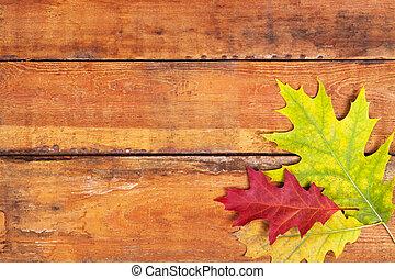 Autumn maple leaves on wood
