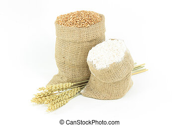 Wheat - Plants, Kernel, Flour. - Picture of wheat ears group...