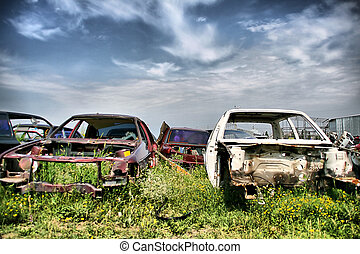 Old cars on the meadow