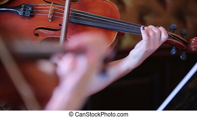 Woman playing the violin - Closeup of a woman playing the...