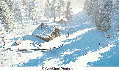 Cozy little hut and snowy firs Top-down view - Top-down view...