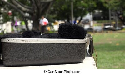 Man With Trumpet and Case