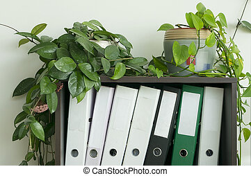 Shelf with accounting files - The wooden shelf with...