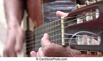 Acoustic Guitar Fret