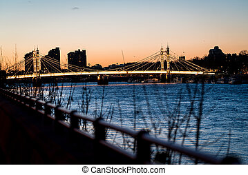 Albert bridge evening - Looking down the Thames at Albert...