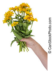 sunflowers in a hand - Bouquet of tiny fresh sunflowers in a...