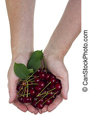 Cherries for You