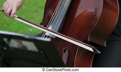 Girl playing cello Close-up