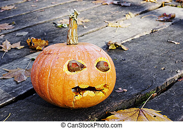 Morning after a Halloween