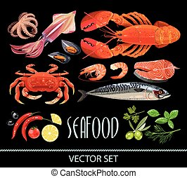 Set of seafood - High detailed fresh seafood and different...