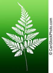 White Fern Leaf Silhouette