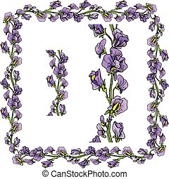 Set of ornaments - decorative hand drawn floral border and frame with  sweet pea flowers, isolated on white background.