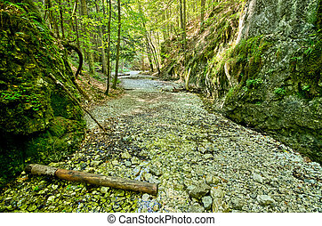 Gorge of Slovak Paradise - Path deep in the gorge of Slovak...