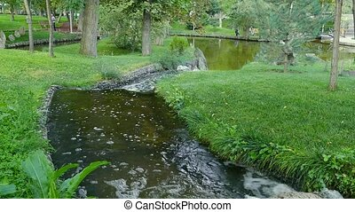 River Flowing in a Park