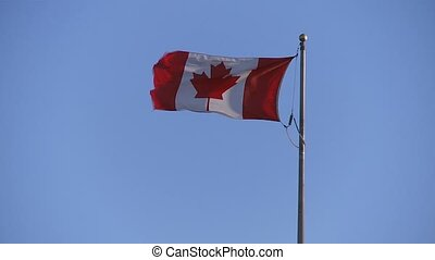 Canada Flag - Canadian flag moving, Celebrating Canada Day...