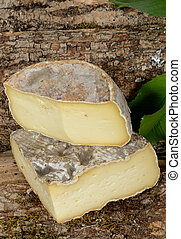 Tomme cheese of Savoie placed on a piece of wood - parts of...