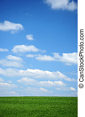 sky - beautiful green meadow with blue sky