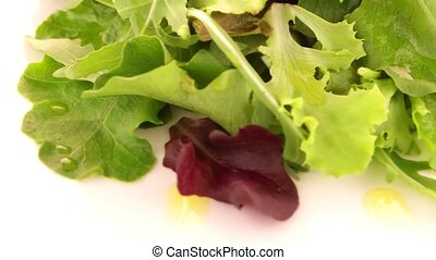 Fresh salad mix - Salad mix with rucola, frisee, radicchio...