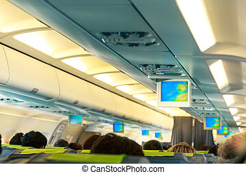 People in the plane - People sitting on the seats in the...