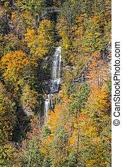 el, otoño, colores, de, Letchworth, estado, parque,
