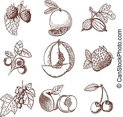 Hand Drawn Berries And Fruits Set