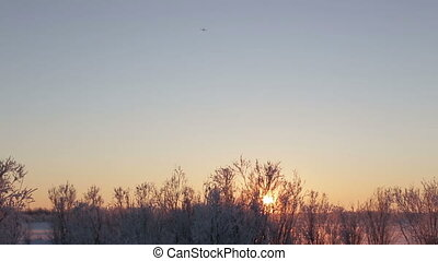 Long shot behind airport plane landing at sunset dusk. -...